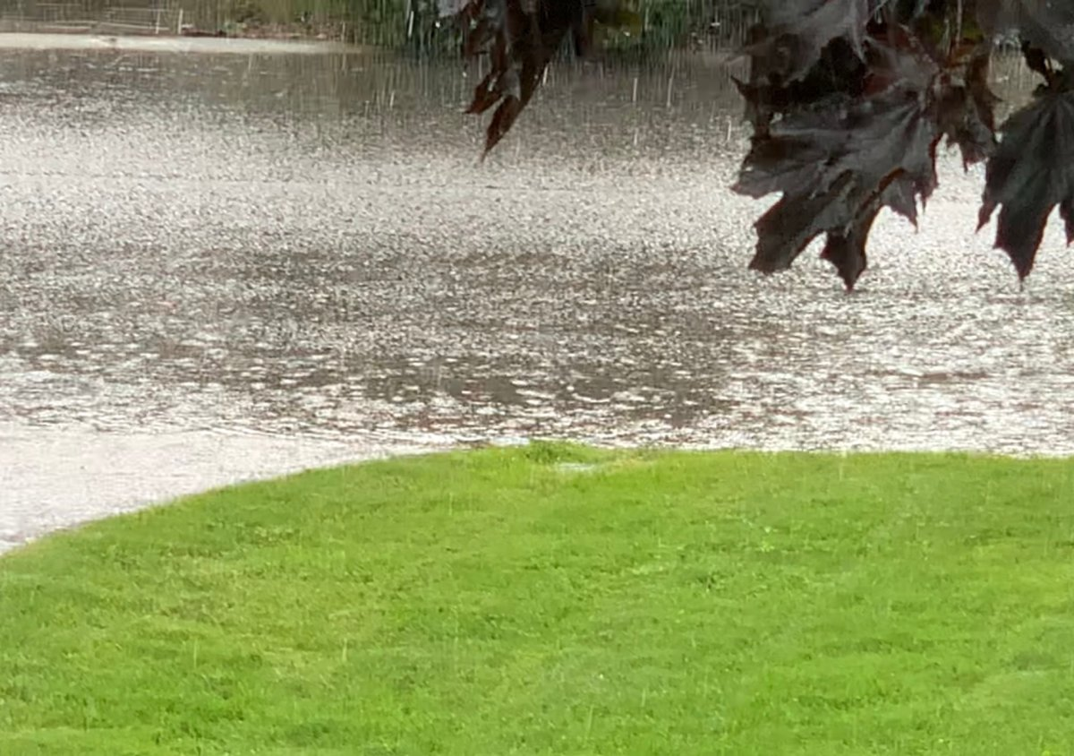 Parts of the Okanagan Valley saw heavy rain Thursday evening.  More rain and the potential for severe thunder is in the forecast for Friday.