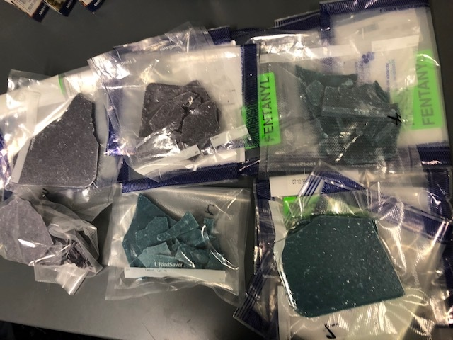 Regina police say they seized one kilograms of fentanyl in a drug bust on July 21.