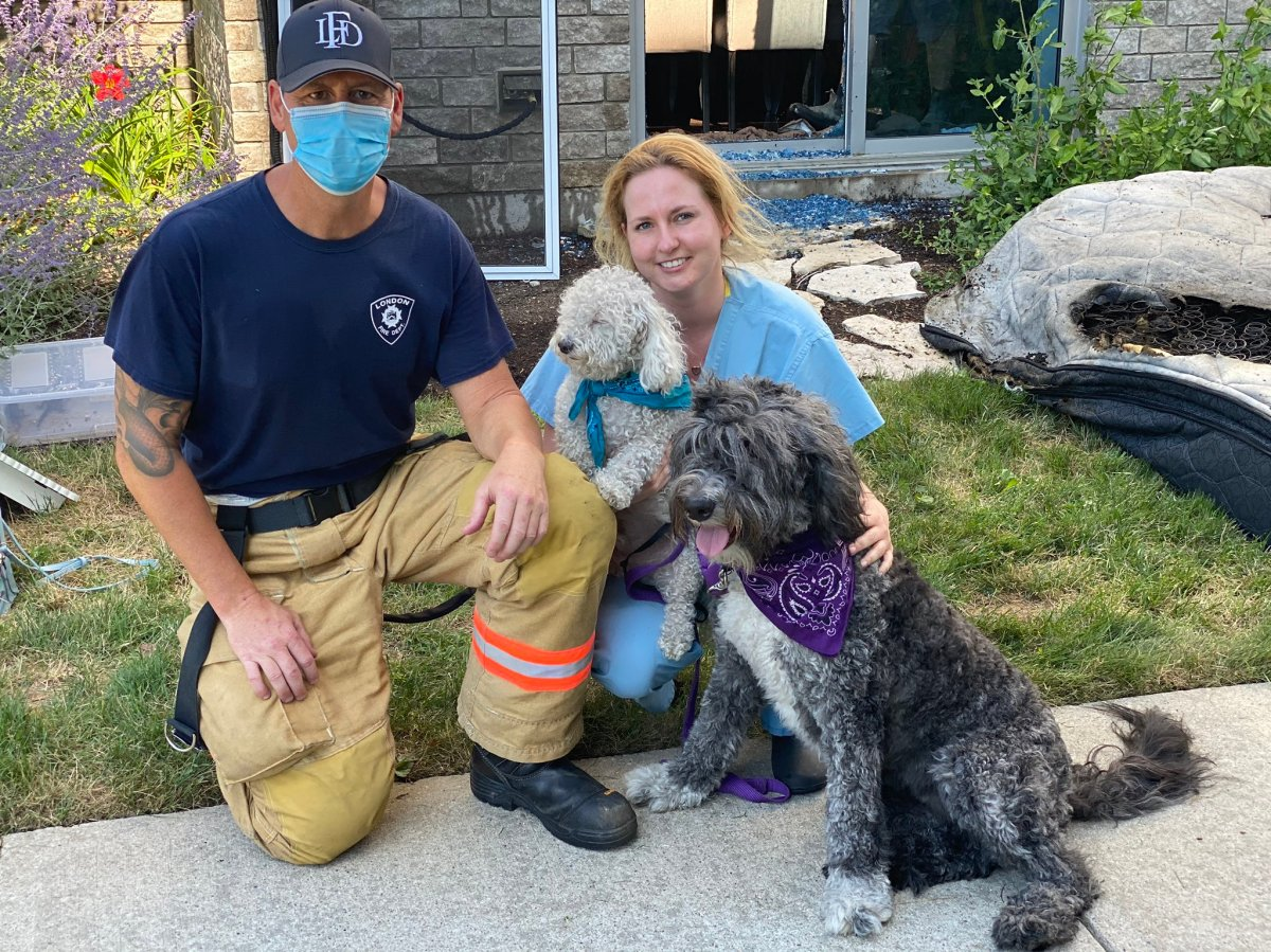 A paw-sitive outcome for these two pooches. A battery pack they chewed on ignited a mattress, seen far right, at a west London residential building on July 23, 2020. Both got out of the building unharmed.