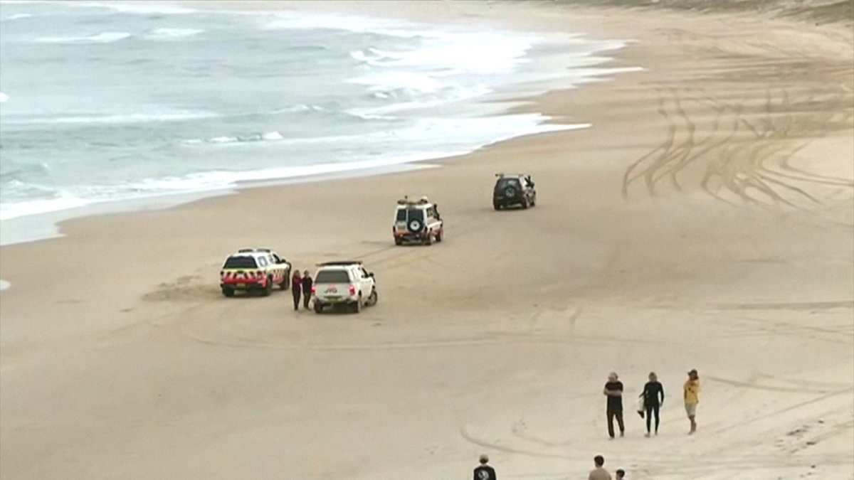 Police said the boy was surfing at Wooli Beach, near Grafton, about 600 kilometres north of Sydney in New South Wales state just before 2:30 p.m. when he was attacked.