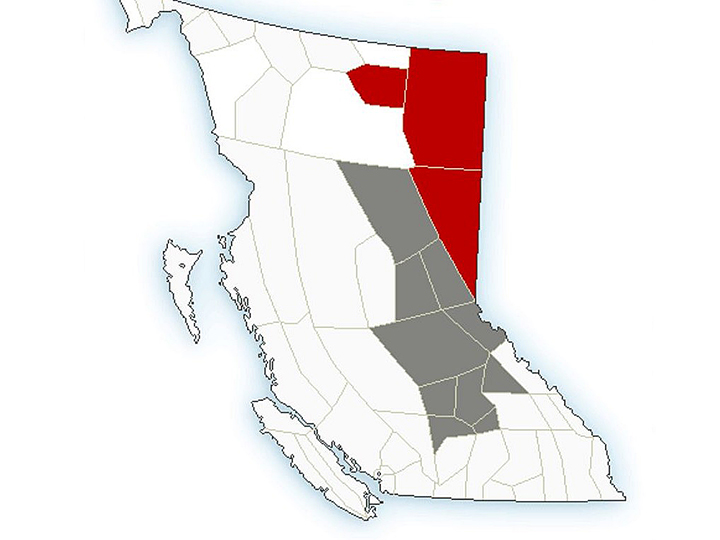 A map showing rainfall alerts (grey) and warnings (red) for B.C. on July 1, 2020.