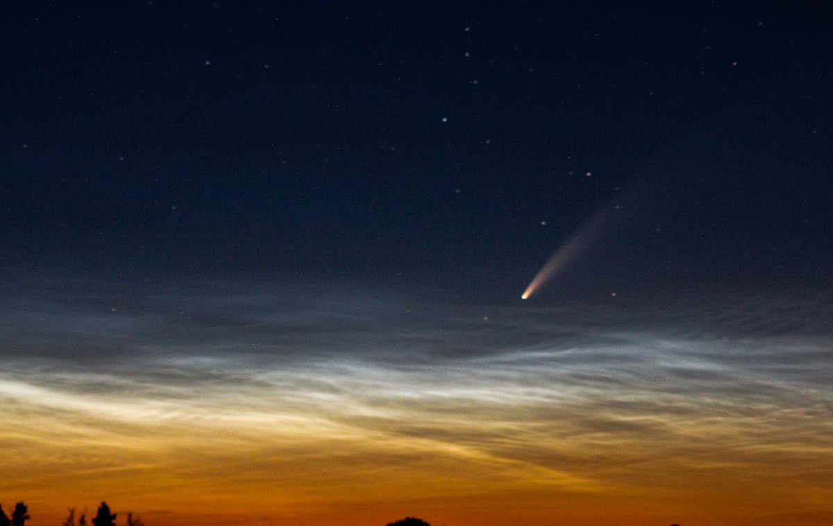 A shot taken of the Neowise Comet in Alberta by Davide Colonna.