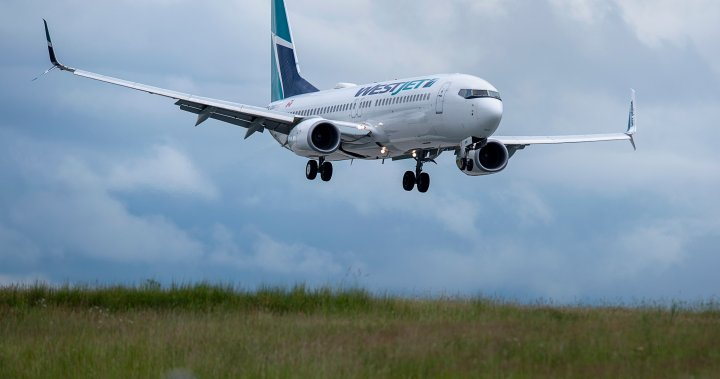 WestJet cuts 'just the leading edge' if feds don't provide aid to airl... image