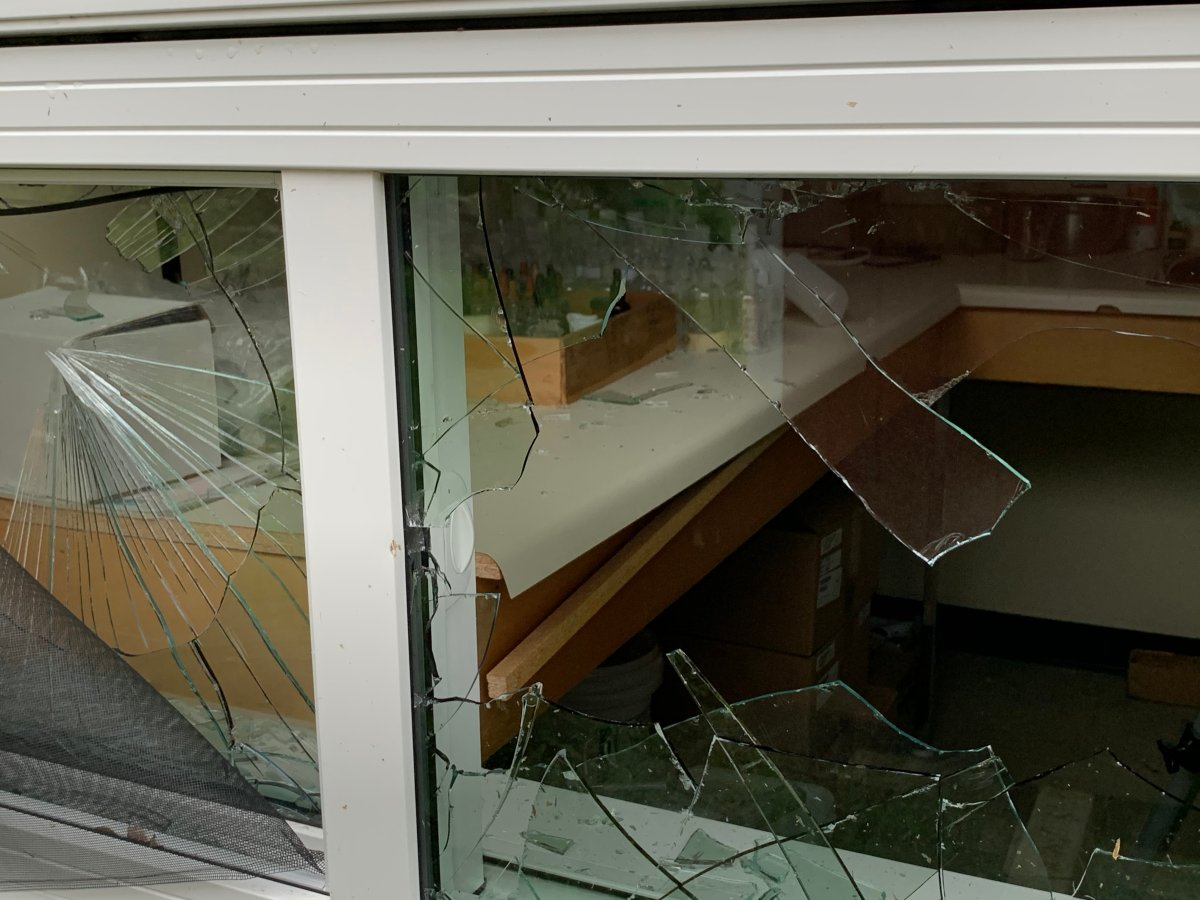 RCMP say a vandal caused more than $200,000 in damage at a school in Cranberry Portage Monday.