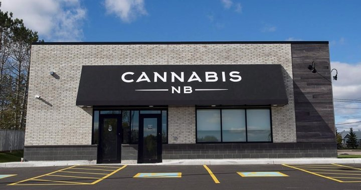 Cannabis NB continues to report profits, decision on potential sale 'in the near future'