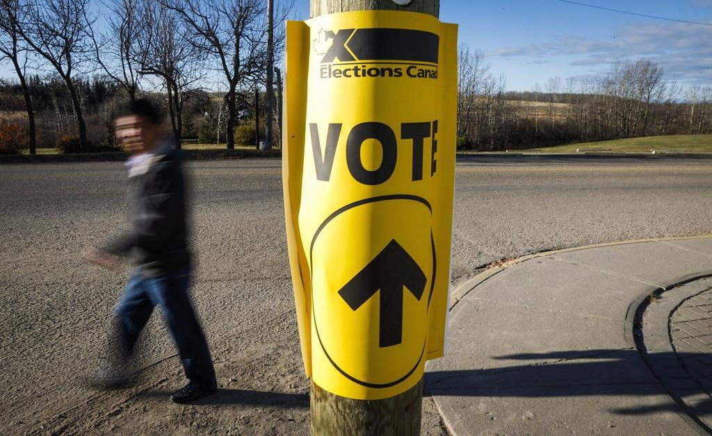 Bill Kelly: Why there won't be an election this year - image