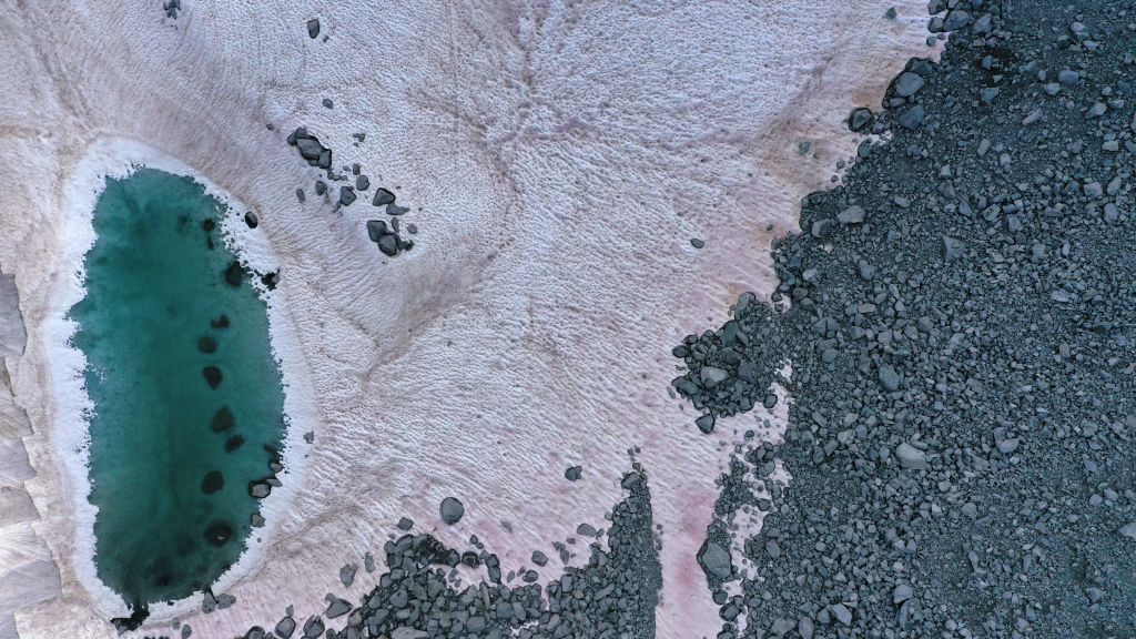 An aerial picture taken on July 3, 2020 above the Presena glacier near Pellizzano, shows pink colored snow, supposedly due to the presence of colonies of algae of the species Ancylonela nordenskioeldii from Greenland.