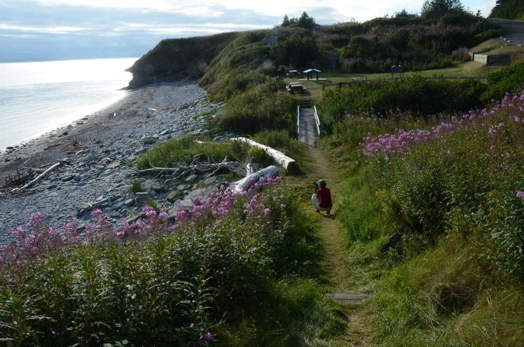 A photographer captures the vista in the south sector of Forillon National Park, in Gaspesie, Que. on Aug. 19, 2016. A member of the Quebec legislature representing the popular tourist region of Gaspe is calling on the province to send police and money to help locals deal with rowdy vacationers.THE CANADIAN PRESS/AP, Cal Woodward.