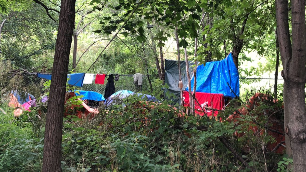 A homeless encampment on Hamilton's escarpment rail trail.