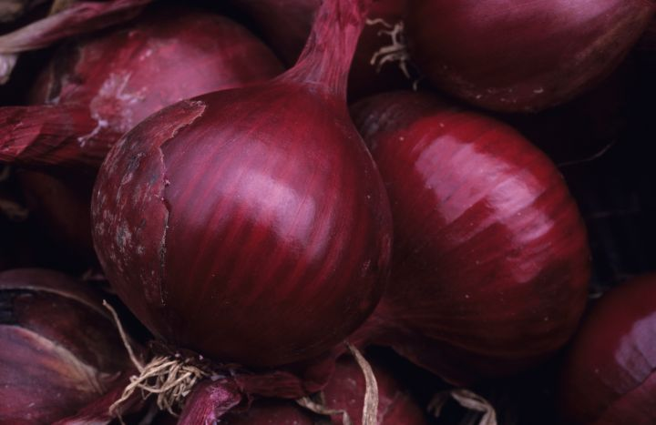 Red onions have been linked to a Salmonella outbreak across Canada and the U.S.