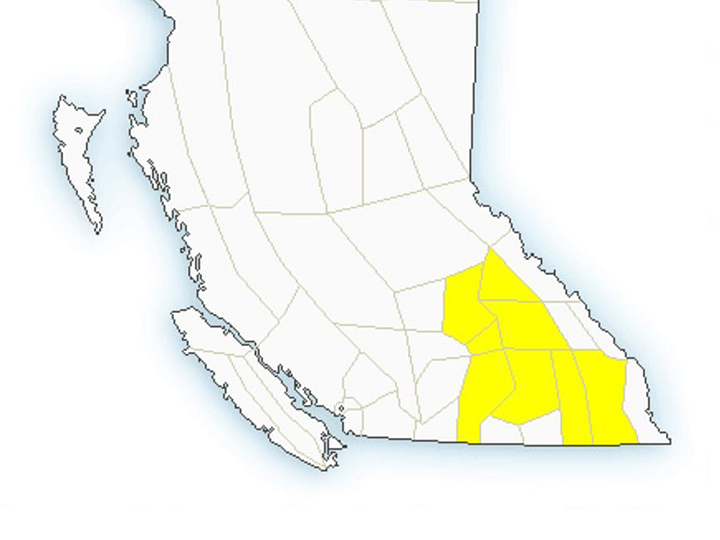 Environment Canada says weather conditions are favourable for severe thunderstorms that could create wind gusts, hail and heavy rain.