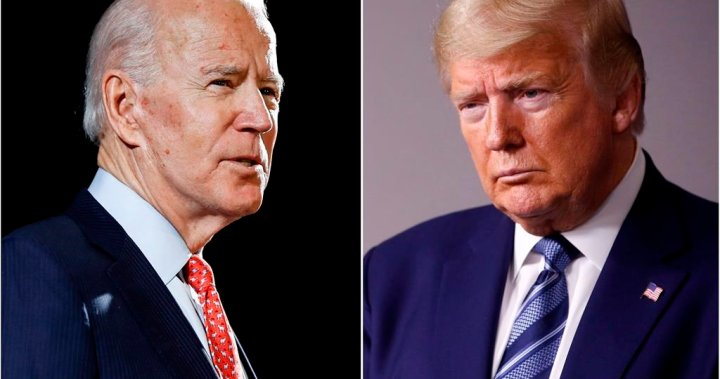 Here is where Trump, Biden stand in the polls 1 week from U.S. election