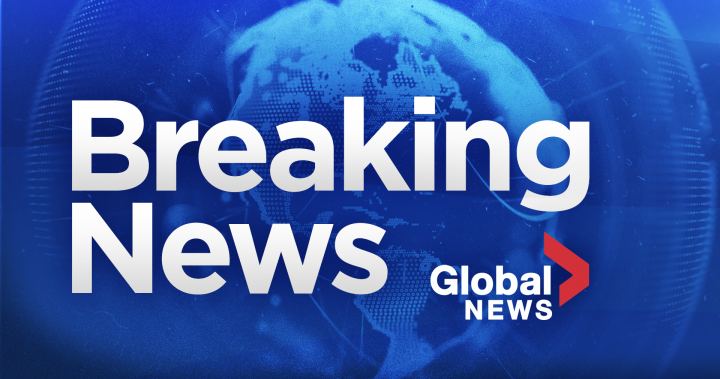 Amber Alert Issued After 2 Young Children Allegedly Abducted In Kitchener Worldnewsera