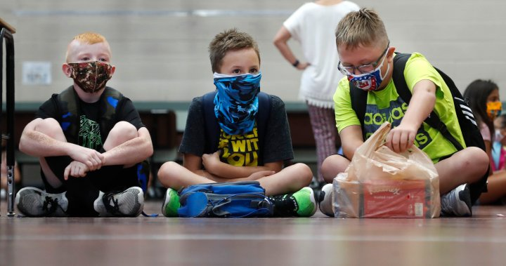 Masks to play 'significant role' in B.C. schools this fall, says education minister