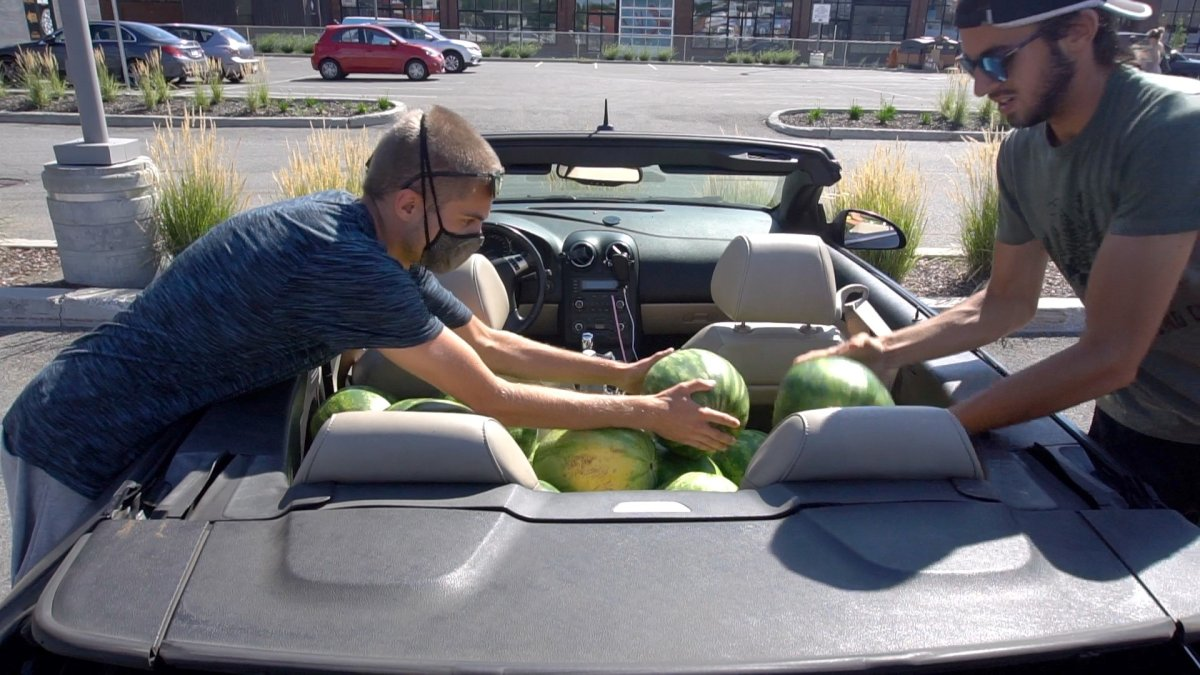 """Evgeny Patvakanov, left, and Victor Rene de Cotret, shown in this handout image, drove around a residential Montreal neighbourhood dropping watermelons on unsuspecting residents' doorsteps. The mischief makers behind the evgeny YouTube channel say the goal of the produce prank is to sow """"chaotic good.""""  ."""