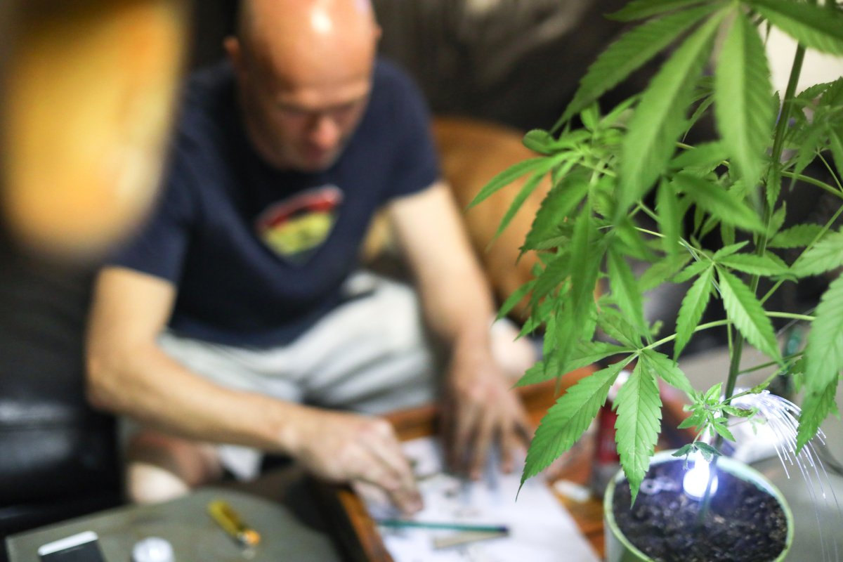 Trying to grow your own pot at home? In Manitoba, it's not as easy as in other provinces.