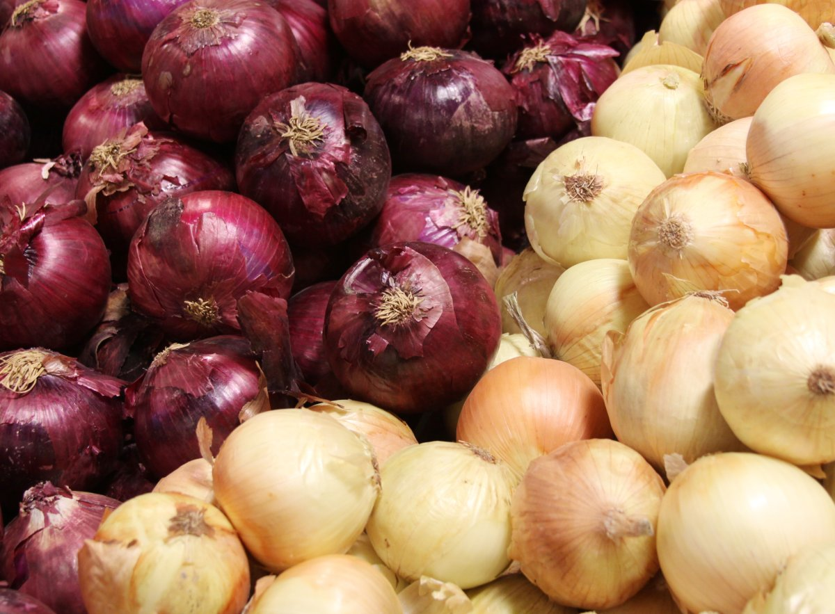 """A N.L. seed company's ad for onions was flagged by Facebook for being """"overtly sexual.""""."""