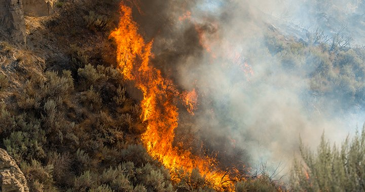 There have been more than 100 wildfires sparked in B.C. in the past week