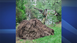 Continue reading: Western University team confirms tornado touchdown in Point Clarke