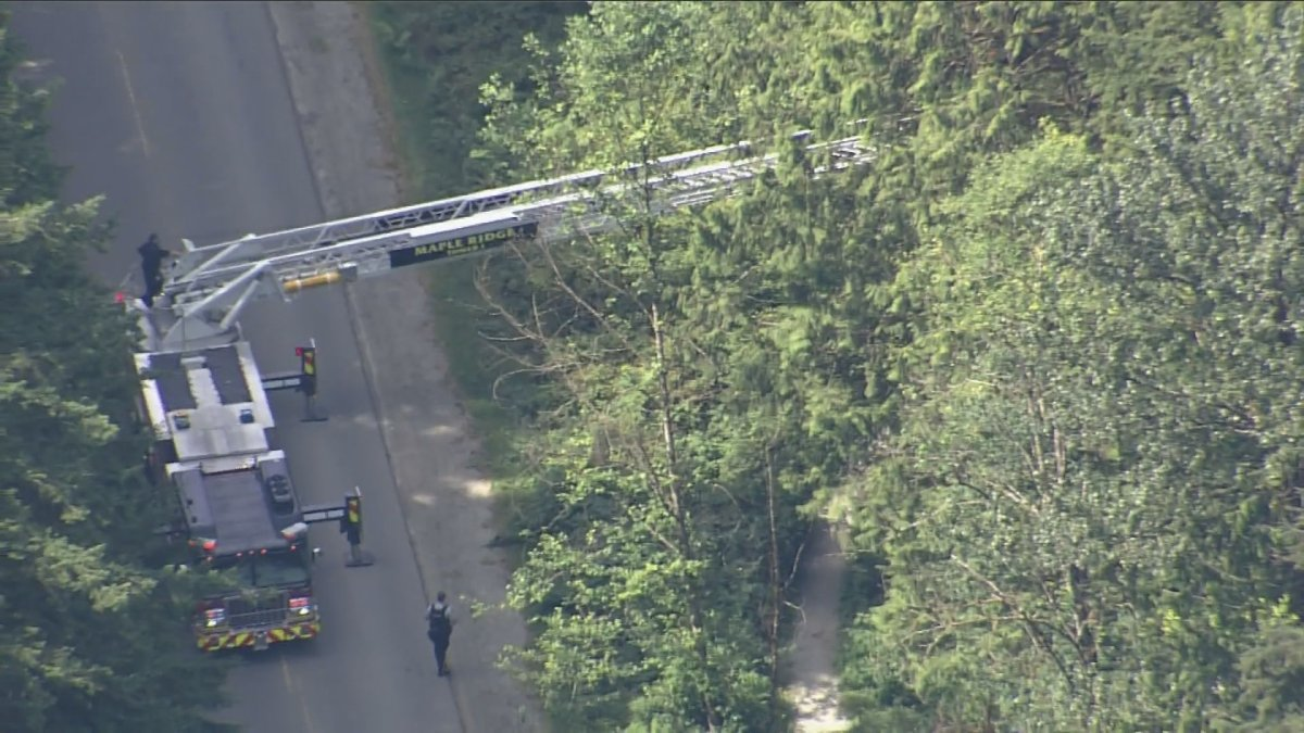 Firefighters extend a ladder truck into a treed area during an emergency situation at Golden Ears Park on Sunday.