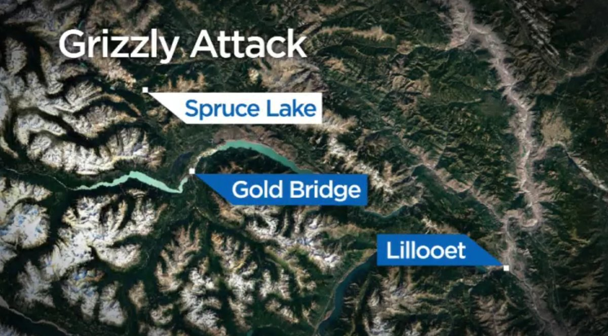 A man is recovering after he was bit by a grizzly bear while mountain biking near Spruce Lake, B.C. Sunday afternoon.
