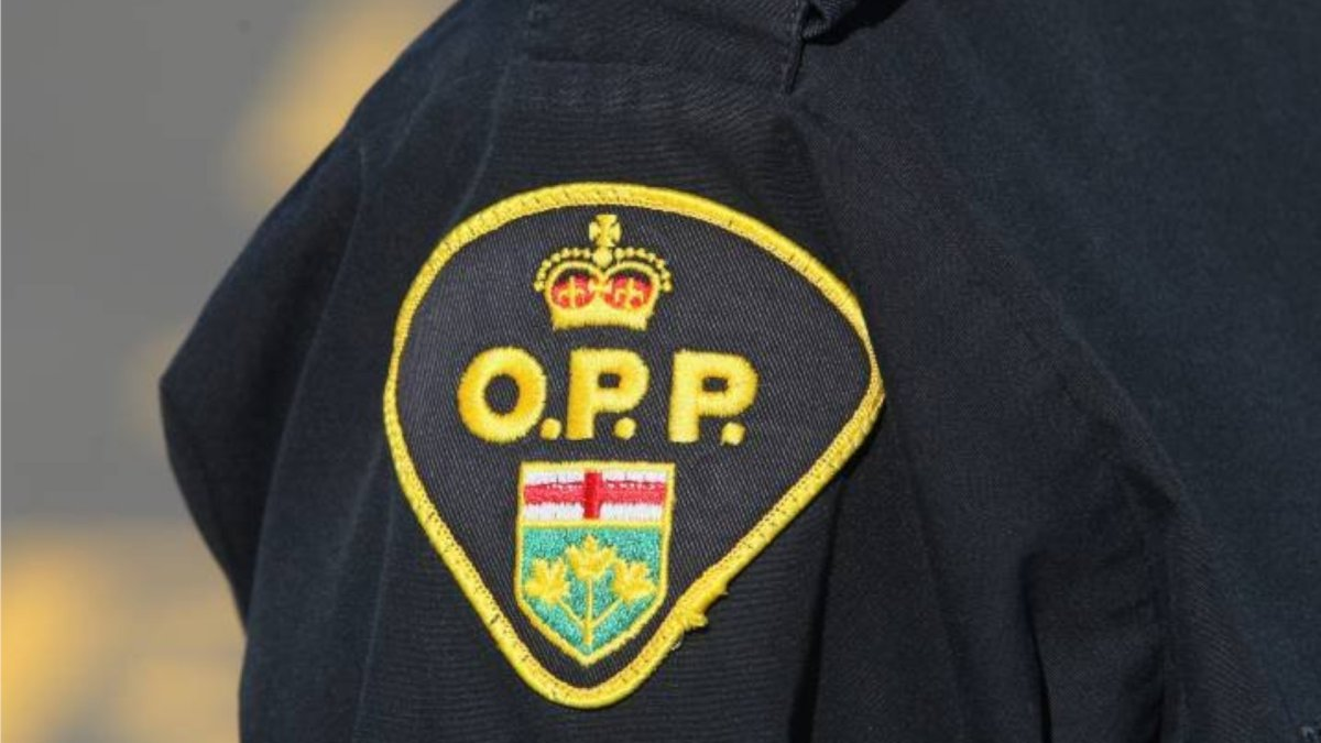 Police are asking anyone who may have witnessed the incident to contact the OPP.