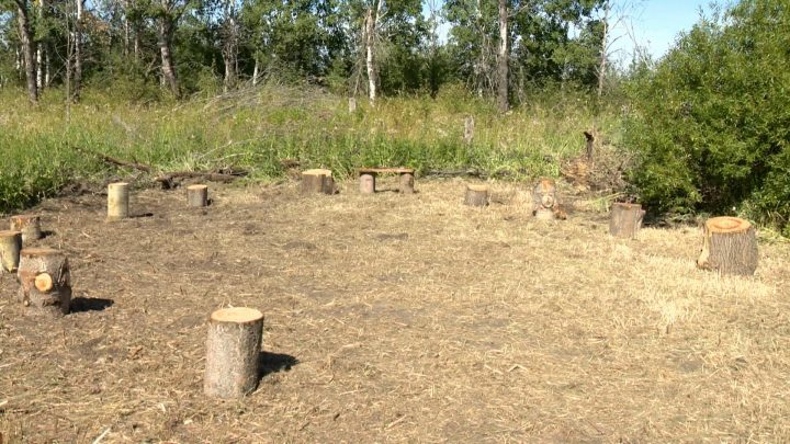 The outdoor classroom has a central meeting point, but students can also explore the 71 acres of land.