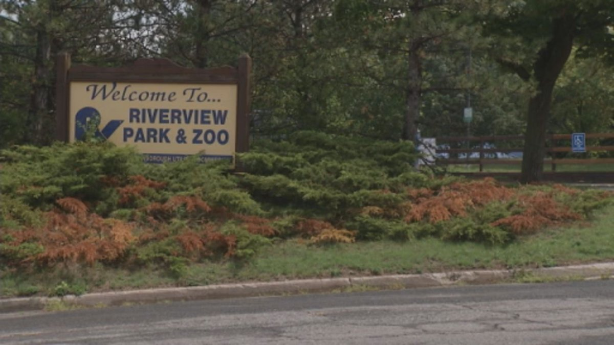 Peterborough's Riverview Park and Zoo will reopen for small guided tours on Aug. 15.