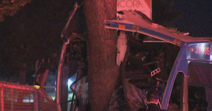 STM bus crashes into tree in Montreal's east end