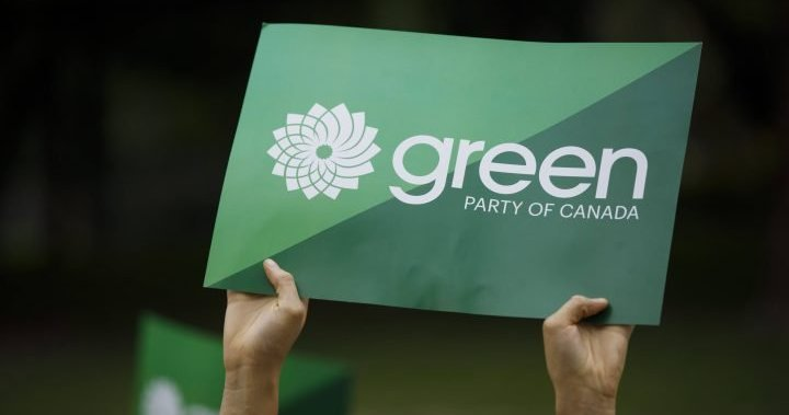 Green leadership race marred by missing ballots, donations before vote: candidates