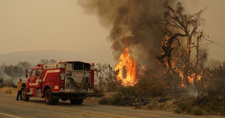 Desert communities evacuate as strong winds stoke California wildfires