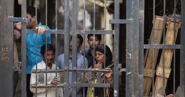 Amnesty International halts work in India, says government is 'freezing dissent'