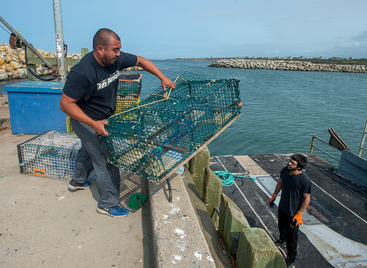 Members of the Sipekne'katik First Nation load lobster traps on the wharf in Saulnierville, N.S., after launching its own self-regulated fishery on Thursday, Sept. 17, 2020. The First Nation says a 1999 Supreme Court of Canada ruling, known as the Marshall decision, granted the Mi'kmaq the right to catch and sell lobster outside of the regular fishing season. THE CANADIAN PRESS/Andrew Vaughan.