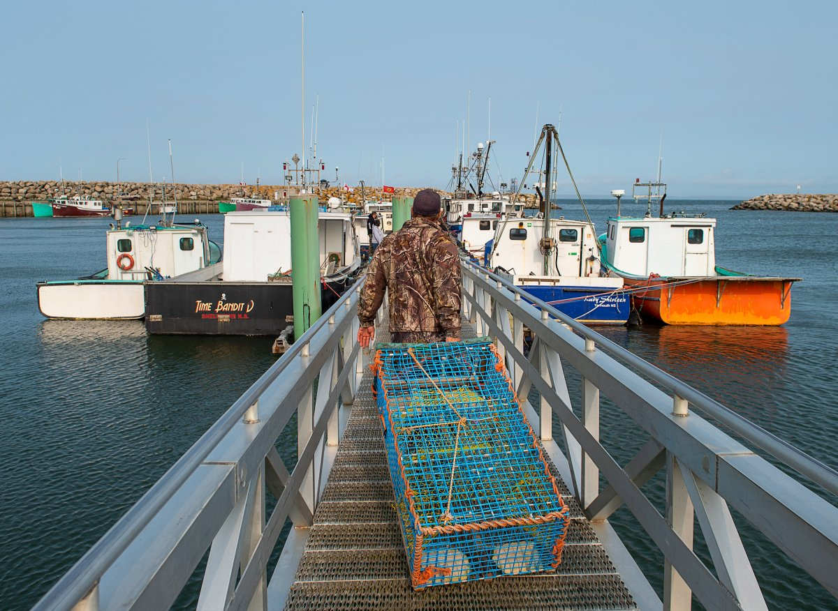 Members of the Sipekne'katik First Nation load lobster traps on the wharf in Saulnierville, N.S., after launching its own self-regulated fishery on Thursday, Sept. 17, 2020.