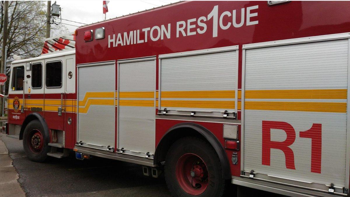 Man rescued in overnight rope rescue near Scenic Drive in Hamilton - image