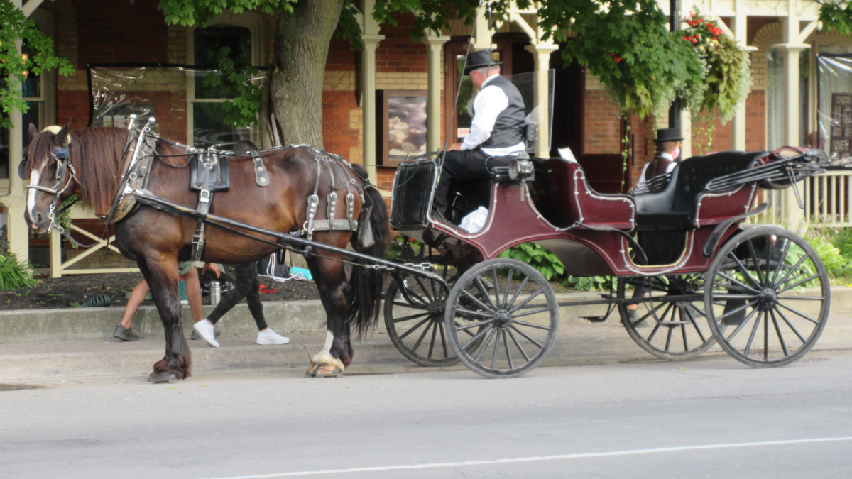 The lord mayor of Niagara-on-the-Lake has asked horse carriage operators to move to a new spot for passenger pickups on the weekends.