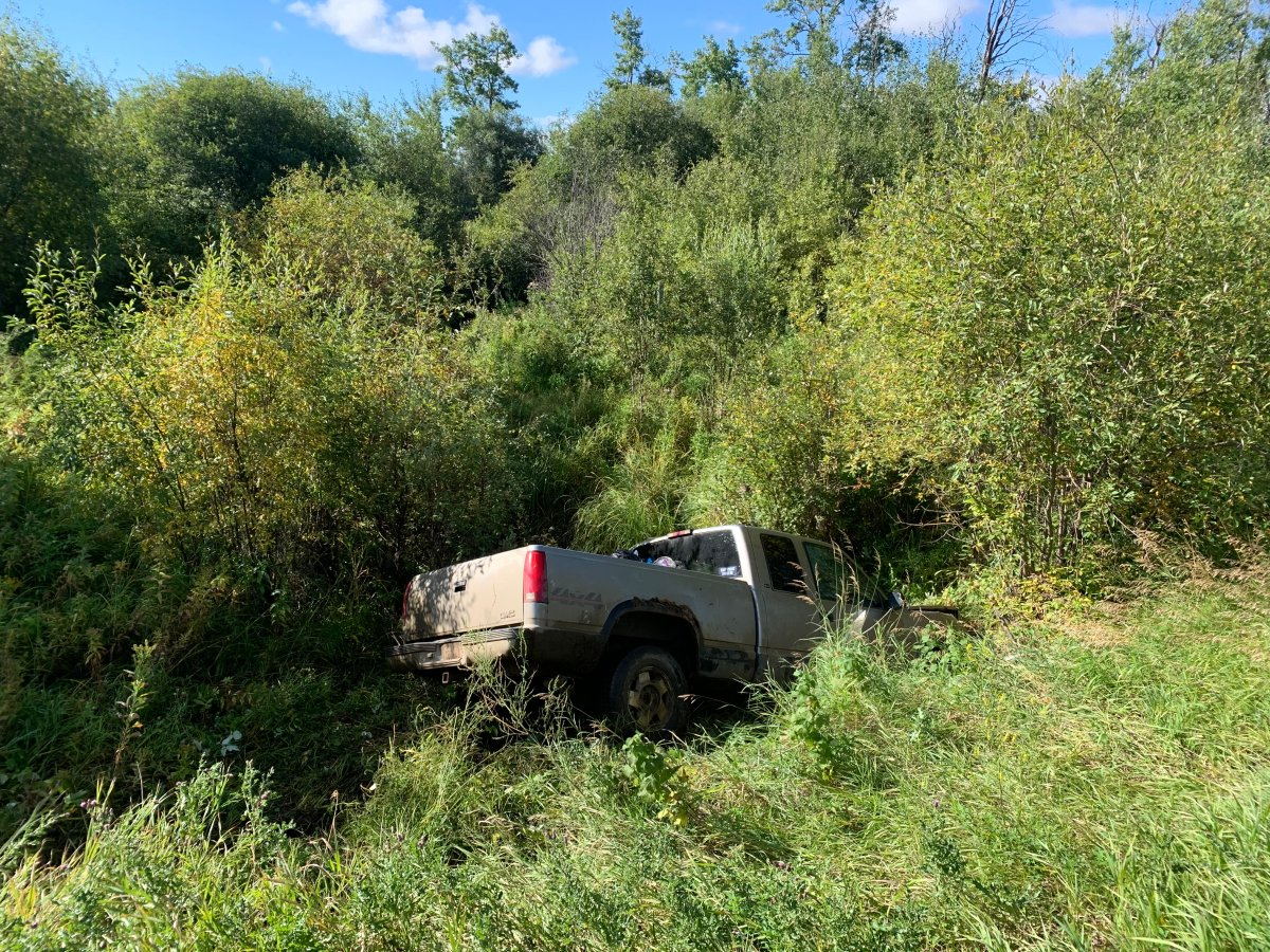 Peace River RCMP believe a pedestrian who was hit and killed along with his dog on a northern Alberta road had earlier crashed a pickup truck into a creek.