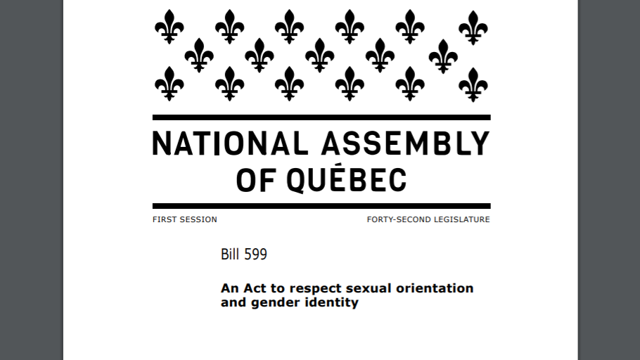 Bill 599 seeks to penalize conversion therapy in Quebec.