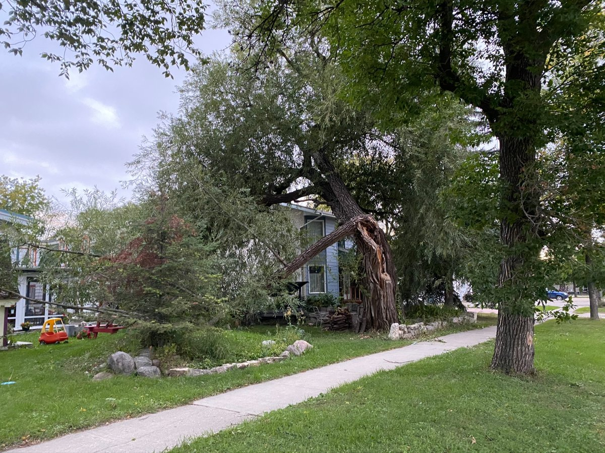Winds of up to 102 km/h toppled trees and left thousands of Manitobans in the dark on Sunday.