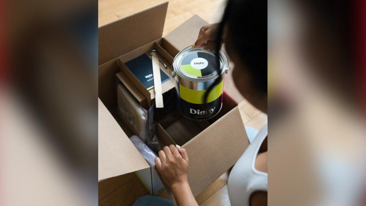 Lion's Lair 2020: online paint store wins Hamilton innovation contest - image