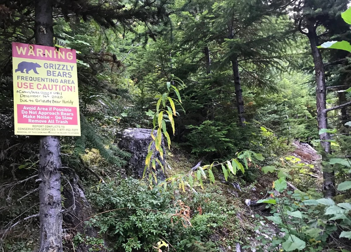 Signage on the North Creek Trail warns hikers to avoid the area after a grizzly attack.