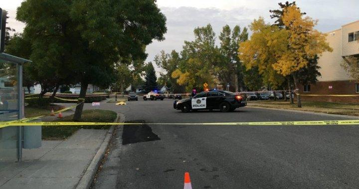 Suspect in custody in fatal Lynnwood stabbing: Calgary police