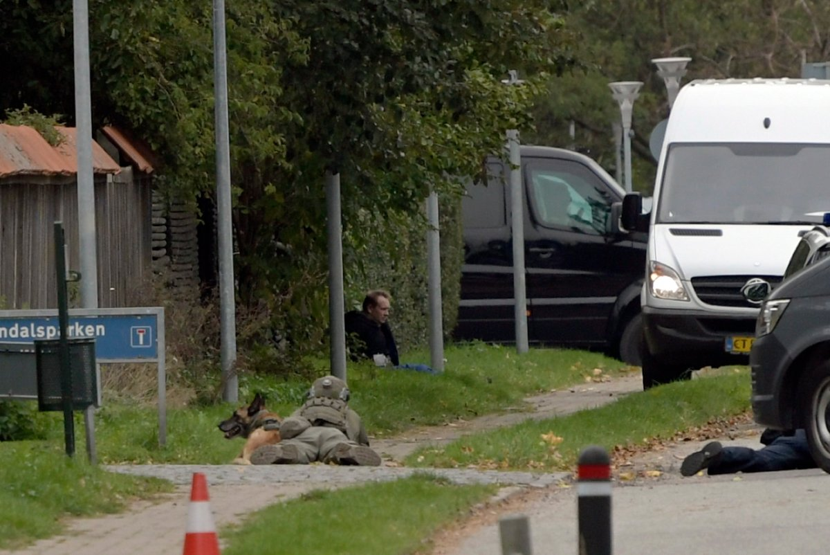 Peter Madsen (up) tries to escape prison in Albertslund, Denmark, 20 October 2020.