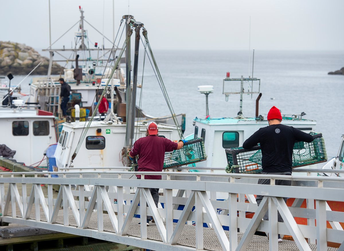 Indigenous fishermen carry lobster traps in Saulnierville, N.S. on Wednesday, Oct. 21, 2020. Tensions remain high over an Indigenous-led lobster fishery that has been the source of conflict with non-Indigenous fishermen. THE CANADIAN PRESS /Andrew Vaughan.