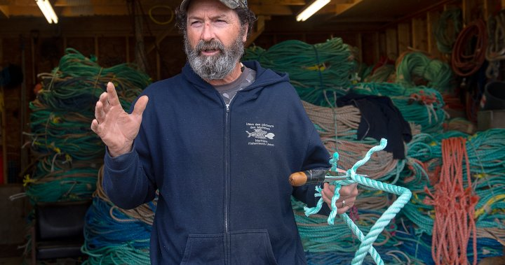 For Acadian fisherman, early Mi'kmaq fishery in N.S. bay can 'never' be respected