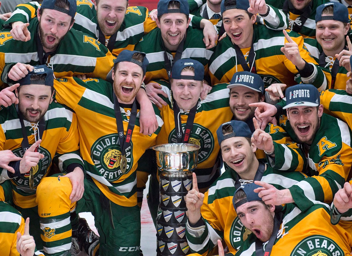 University of Alberta Golden Bears celebrate after defeating the St. Francis Xavier University X-Men 4-2 to win the USports University Cup at the Canadian university men's hockey championship gold medal game in Fredericton on Sunday, March 18, 2018. THE CANADIAN PRESS/Andrew Vaughan.
