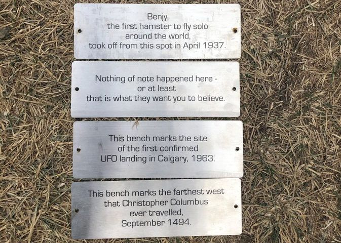 Some plaques that mysteriously appeared on benches in Calgary's Bowmont Park recently — and were then removed — have been reinstalled after Calgarians spoke out in favour of them.