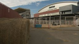 Continue reading: Woman seriously injured after horse tramples her at Calgary Stampede grounds