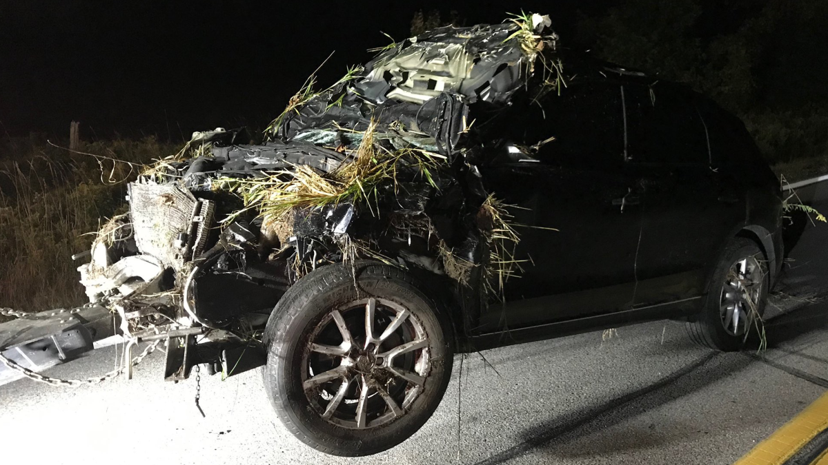 Halton police says a driver from Guelph is facing charges after a single-vehicle collision near Nassagaweya towship west of Milton, Ont.