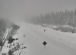 Continue reading: B.C.'s Southern Interior undergoing first major snowfall of season
